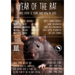 12080 Year of the rat ENG