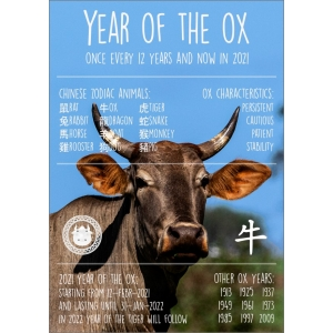 12355 Year of the Ox (ENG)